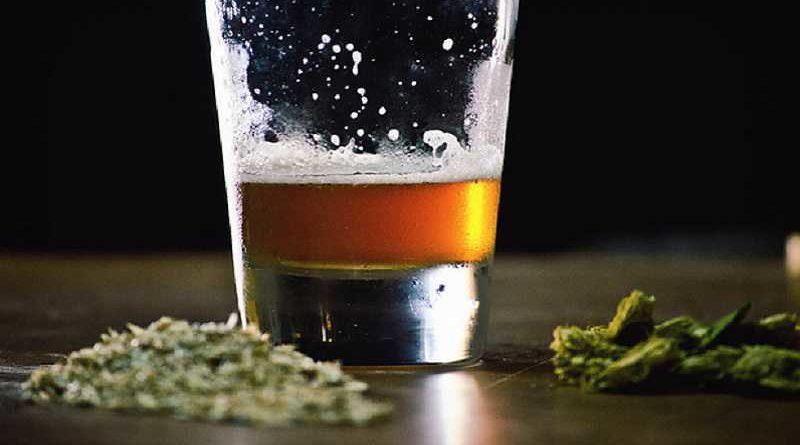 Fabrican la primera cerveza con marihuana