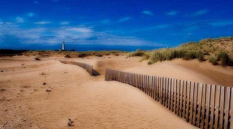 Playa nudista obliga a que se usen toallas transparentes