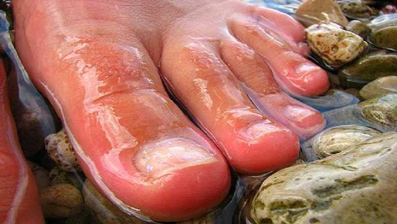 Obligados los socorristas a llevar las uñas de los pies largas para nadar más rápido