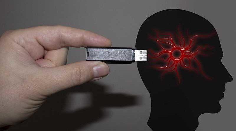 Crean una memoria externa para descargar datos del cerebro humano