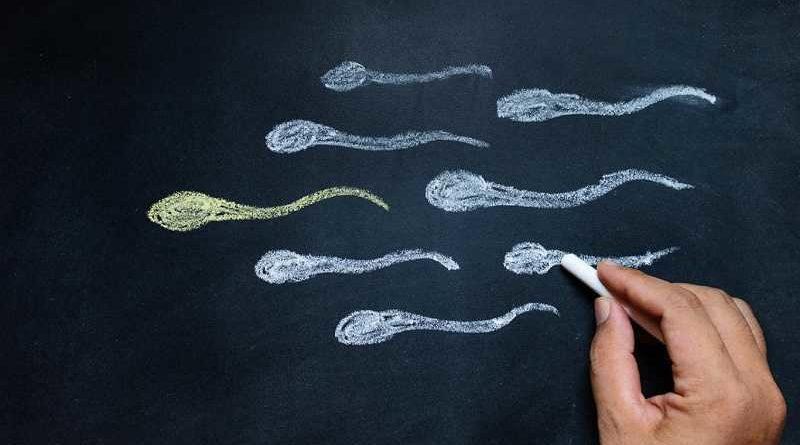 Científicos alertan que retener el semen podría dejar embarazo al hombre