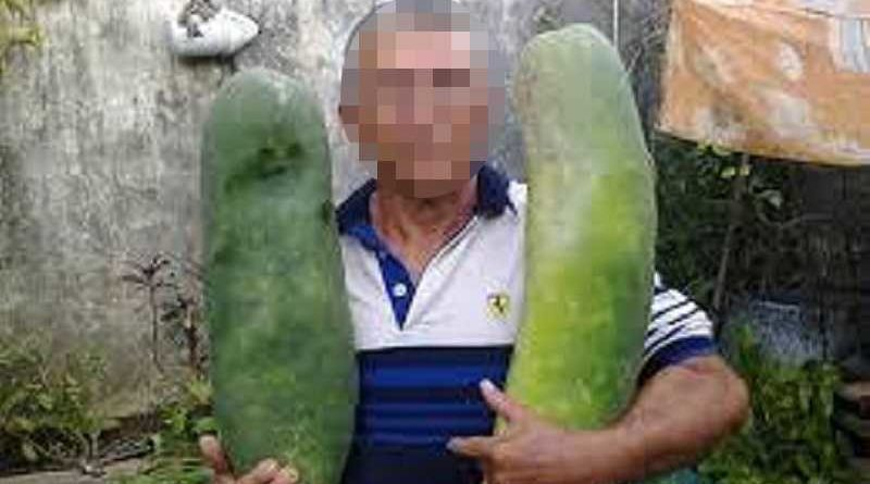 Un agricultor de Murcia inventa el pepino con sabor a gintonic que triunfa en medio mundo
