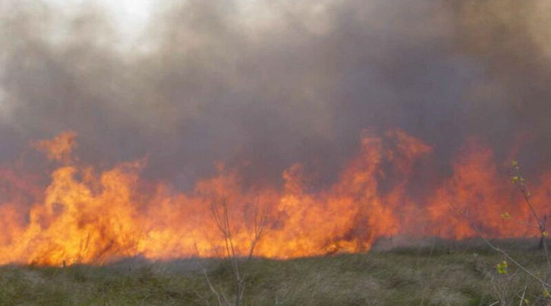 Celebra que ha aprobado las oposiciones de bombero con una barbacoa y calcina más de 10 hectáreas
