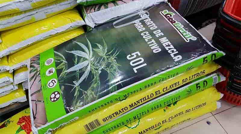 Utiliza fertilizante de marihuana y consigue que sus verduras sean estupefacientes
