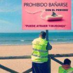 Prohíben en una playa bañarse con la regla porque atrae tiburones