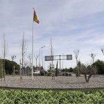 Alcalde planta marihuana en una rotonda para amortizar su construcción