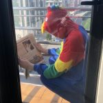 Se disfraza de pájaro y caga en la terraza de su vecino porque le debía 5 €